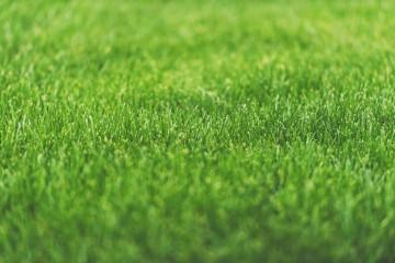 Fall Lime Soil Amendment