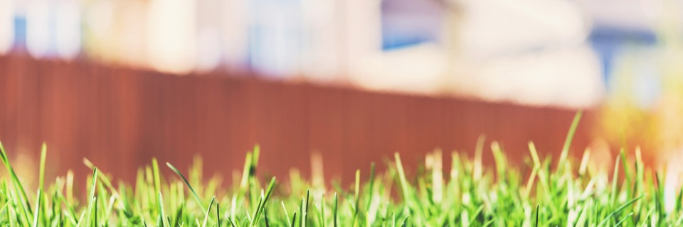 We know how to make your lawn healthy and happy.